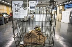Cela utilizada por sequestradores para manter vítima em cativeiro em 1993